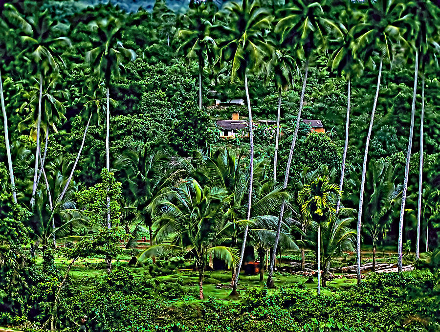 Jungle Life Photograph  - Jungle Life Fine Art Print