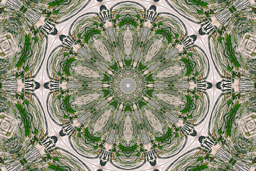 Kaleidoscope Digital Art  - Kaleidoscope Fine Art Print