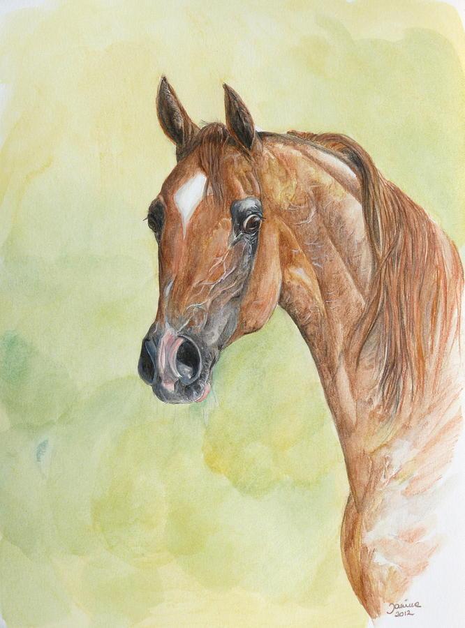 Horse Original Painting Painting - Kwestura by Janina  Suuronen