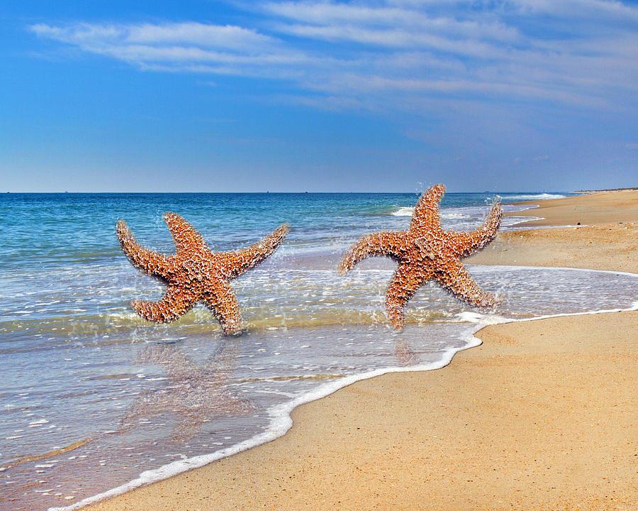 Beach Digital Art - Lifes A Beach by Betsy C Knapp