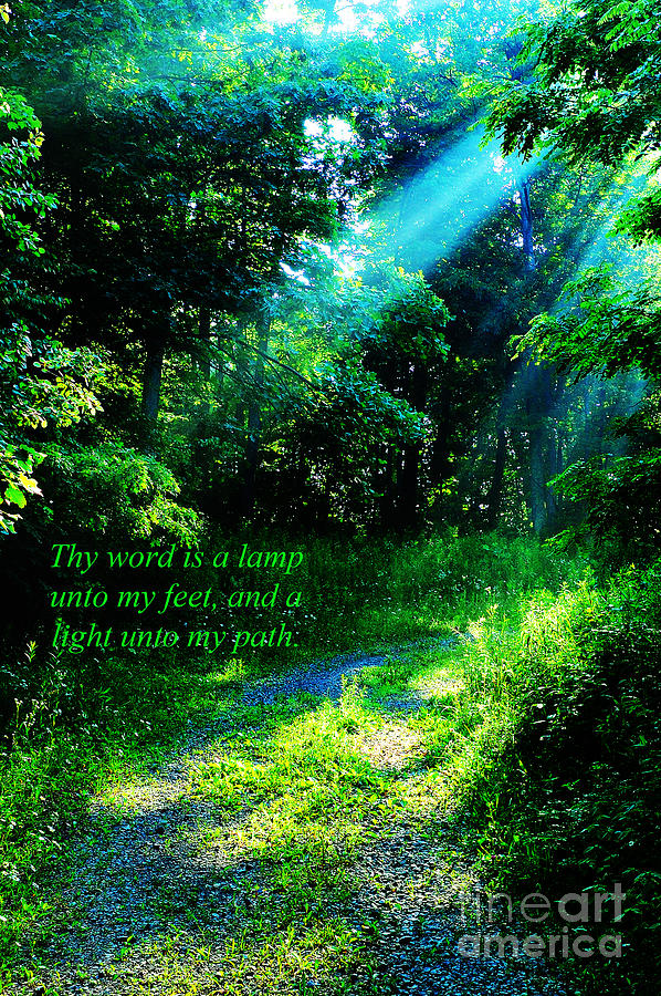 Light Unto My Path Photograph  - Light Unto My Path Fine Art Print