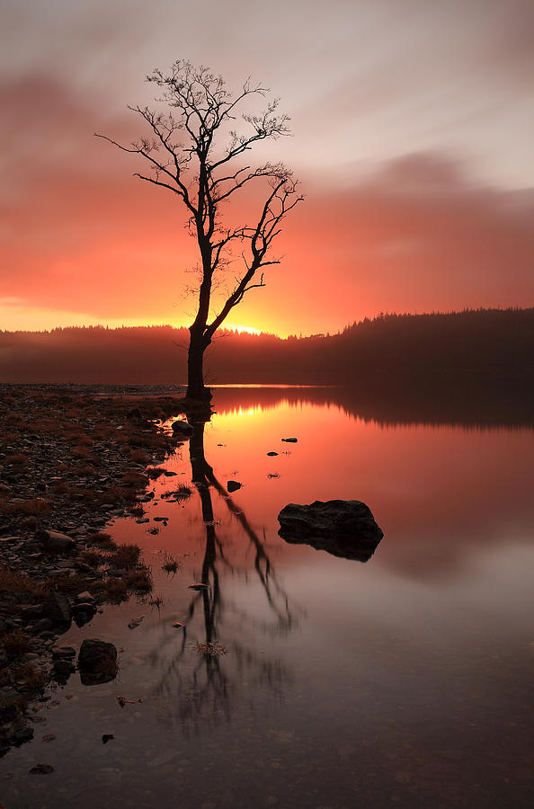 Loch Ard Sunrise Photograph