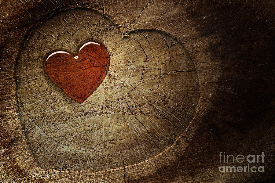 Love Text On  Wooden Background Digital Art