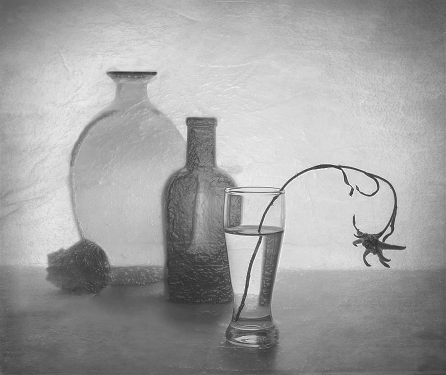 3d Black White Art Still Life Melancholy