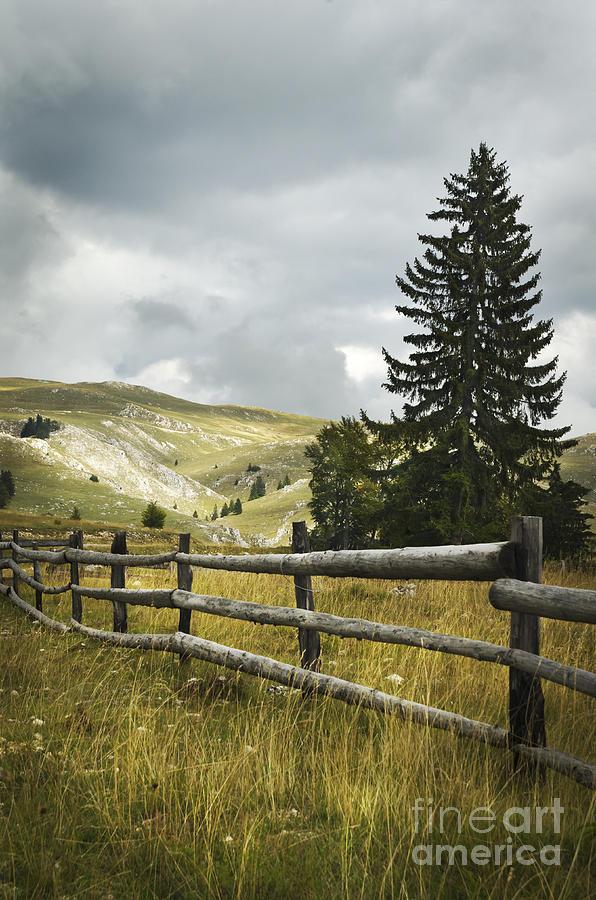 Fence Pyrography - Mountain Landscape by Jelena Jovanovic