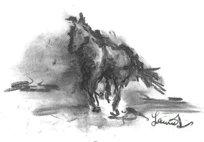 My Stallion Drawing