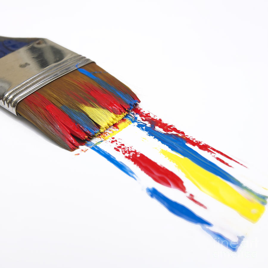 Paintbrush Photograph