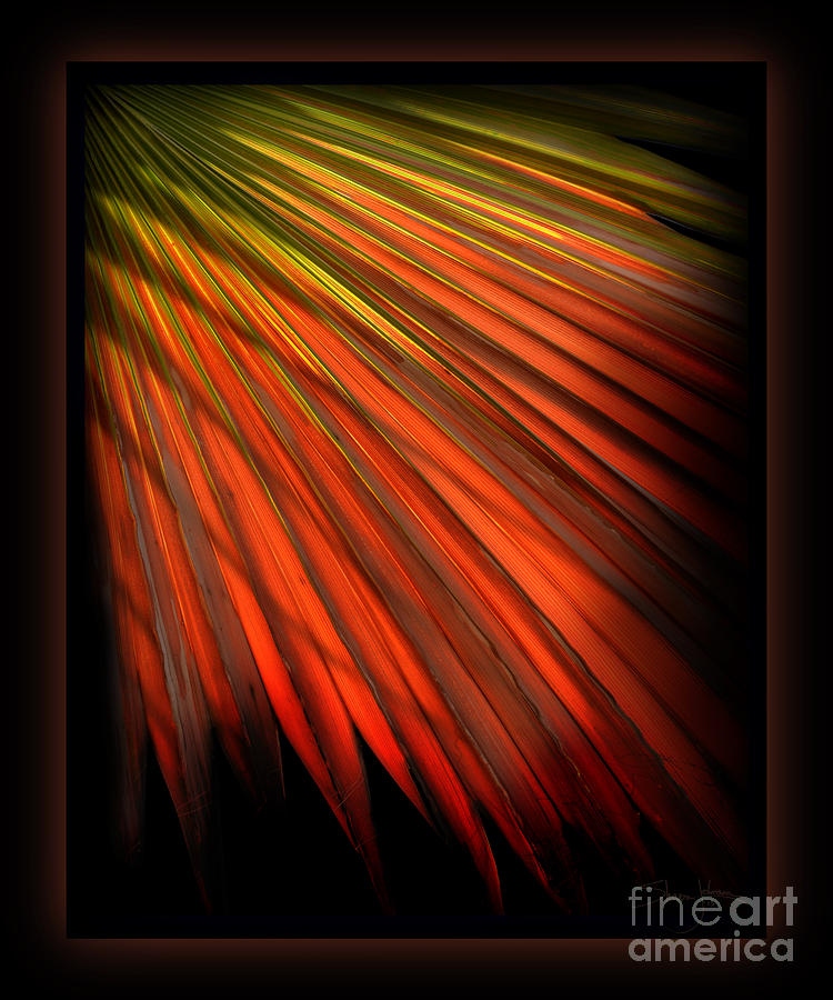 Palm Sunday Mixed Media  - Palm Sunday Fine Art Print