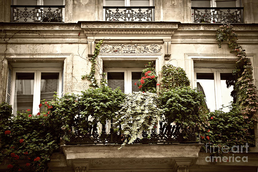 Paris Windows Photograph  - Paris Windows Fine Art Print