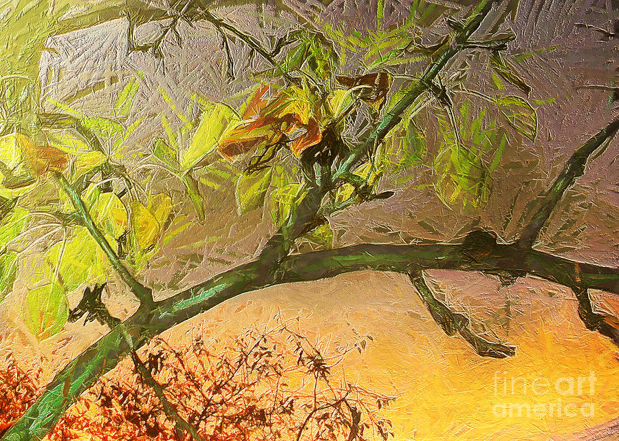 Pear Tree In The Sunset Painting  - Pear Tree In The Sunset Fine Art Print