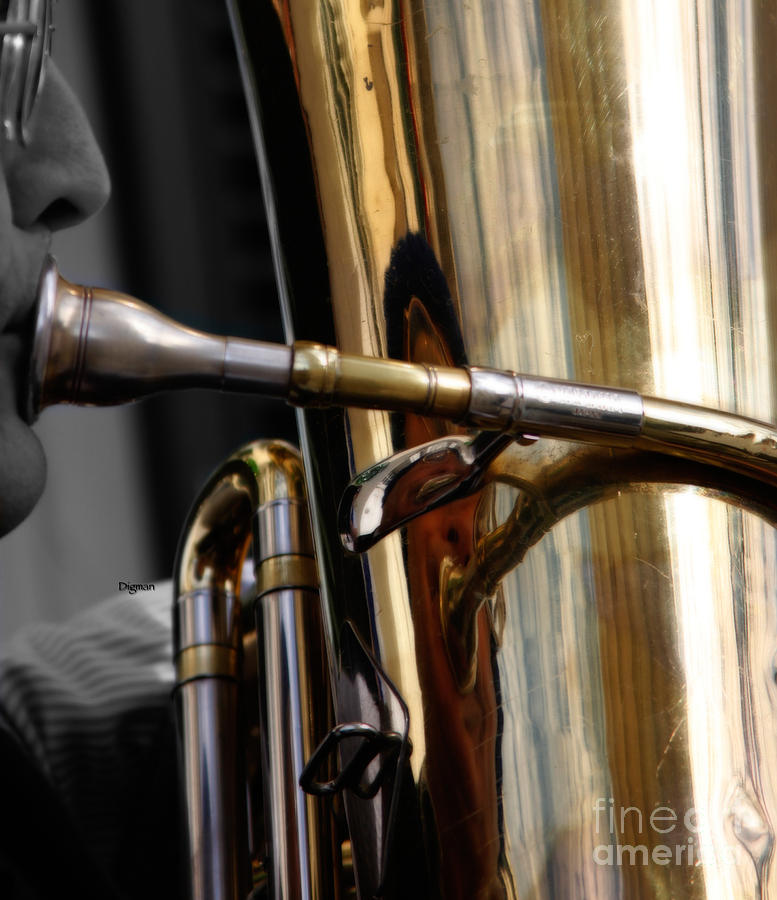 Profile In Tuba Photograph  - Profile In Tuba Fine Art Print