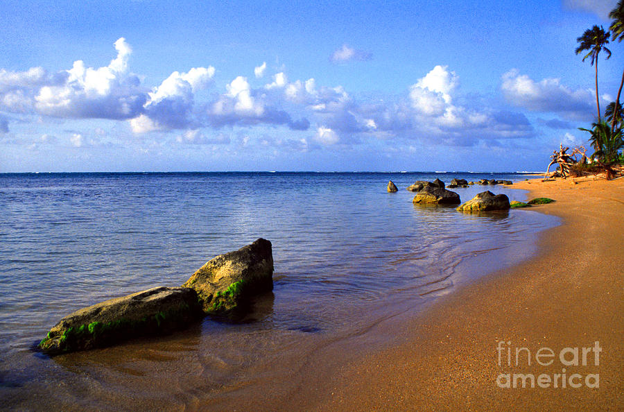 Puerto Rico Rio Grande Shoreline Photograph