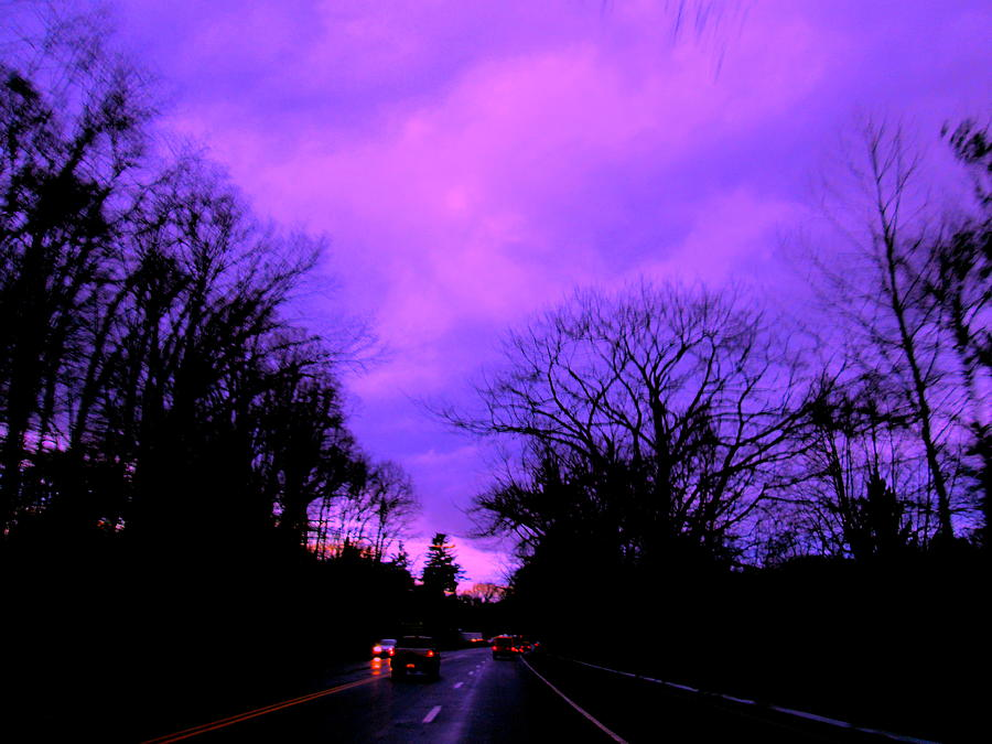Purple Haze Photograph  - Purple Haze Fine Art Print