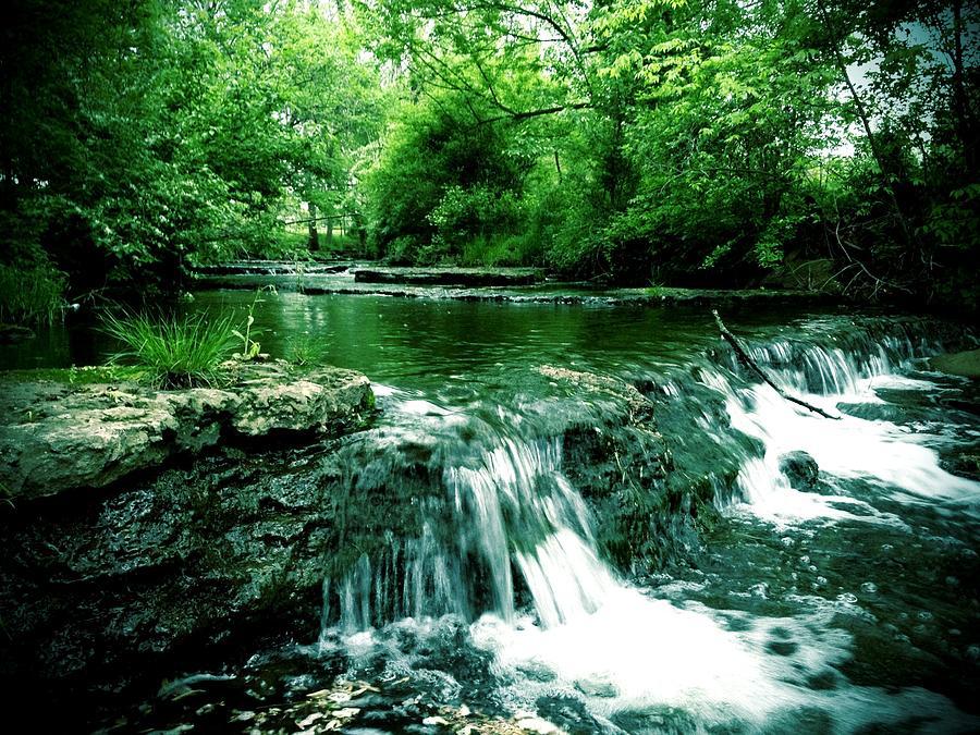 Putney Pond Photograph