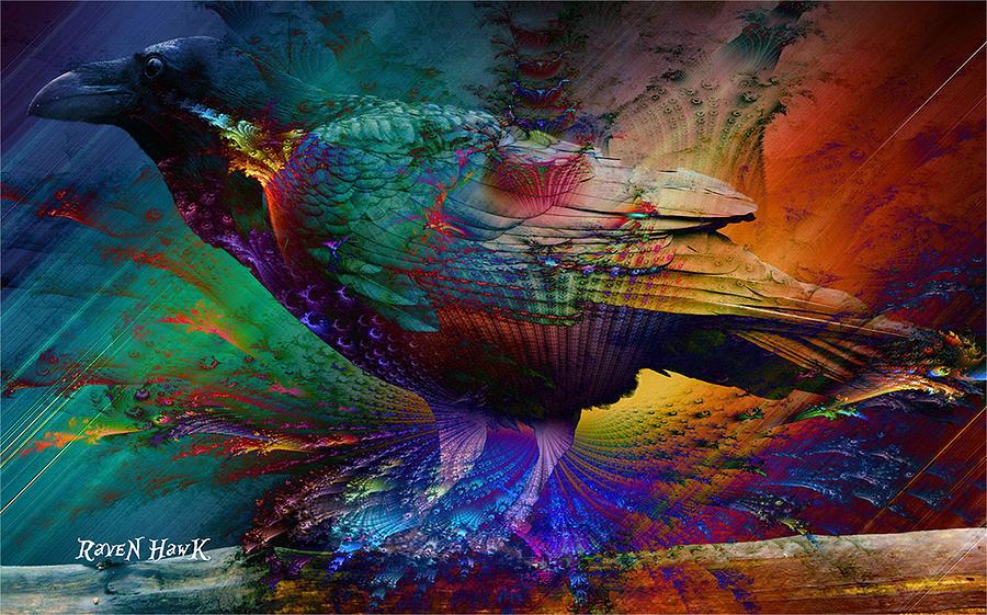 Rainbow Raven Photograph