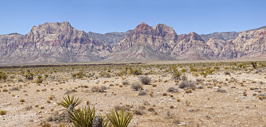Red Rock Canyon Panorama Nevada. Photograph