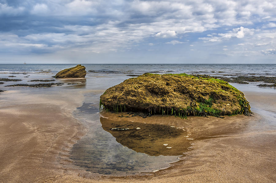Bay Photograph - Rock by Svetlana Sewell