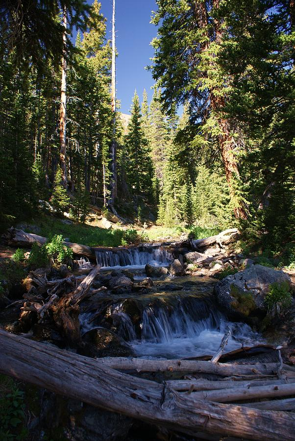 Rocky Mountain Summer Photograph