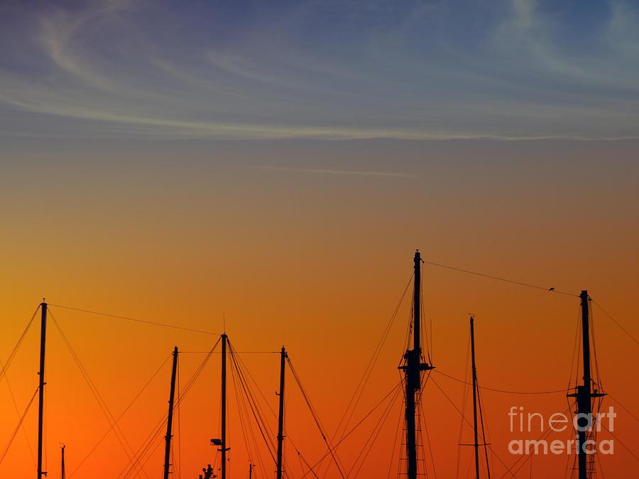 Sailing Boats Photograph