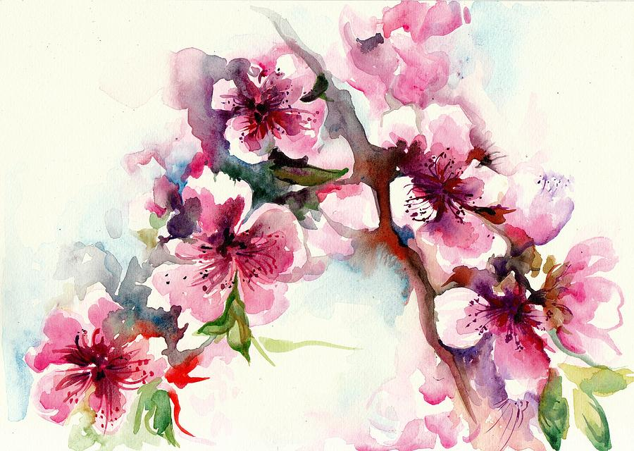 Sakura Cherry Tree Blossom Watercolor Painting By