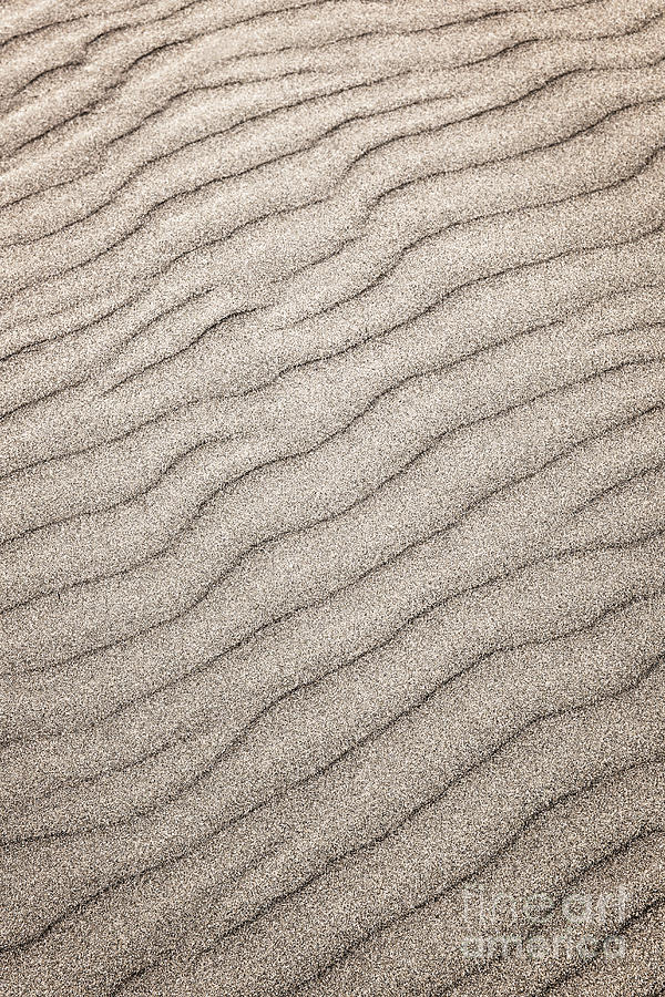 Sand Ripples Abstract Photograph  - Sand Ripples Abstract Fine Art Print