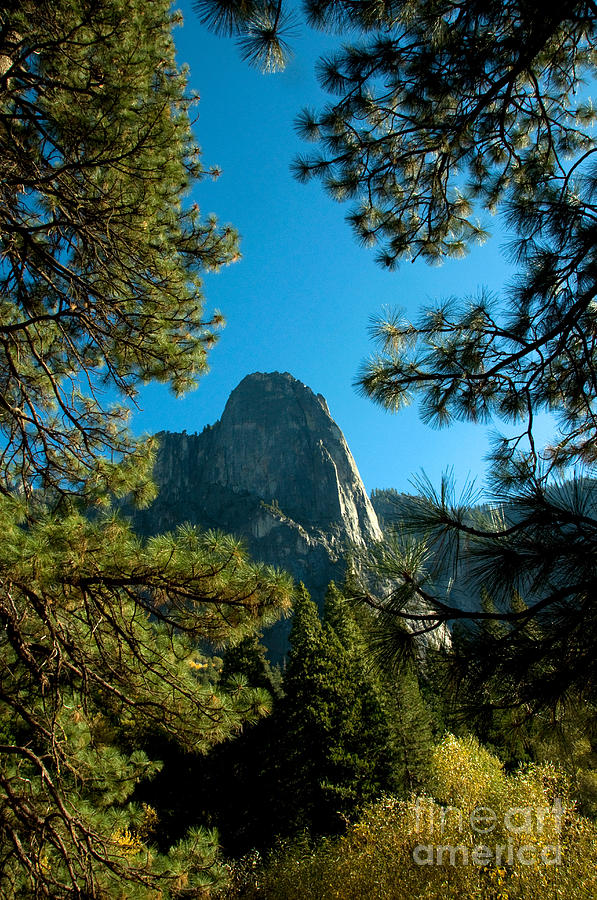 Sentinel Dome, Yosemite Np Photograph
