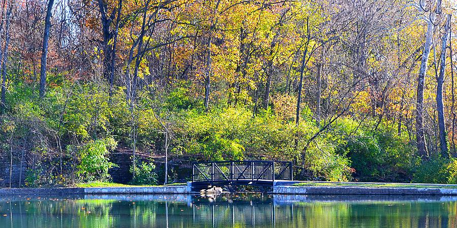 Scenery Photograph - Sequiota Park by Deena Stoddard