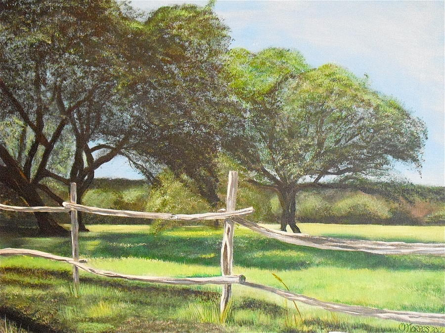 Shady Oak Trees Painting