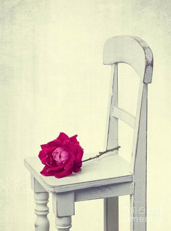 Rose Photograph - Single Red Rose by Edward Fielding