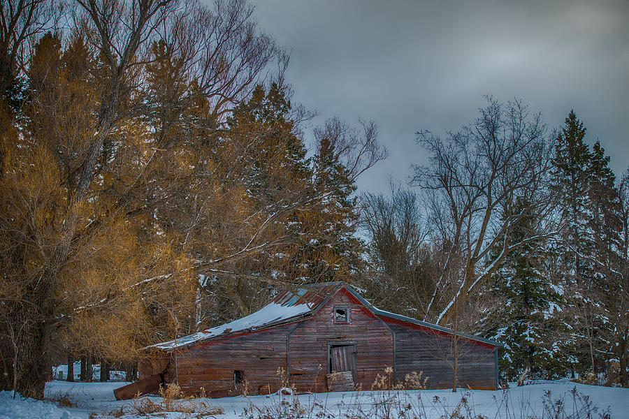 Small Barn Photograph