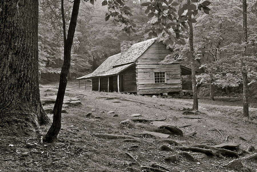 Smoky Mountain Cabin Photograph  - Smoky Mountain Cabin Fine Art Print