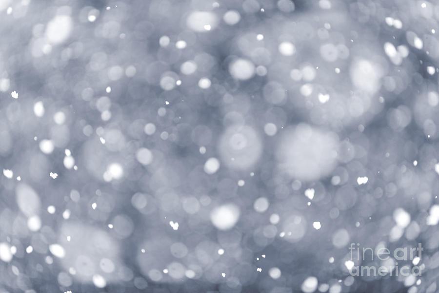 Snowfall  Photograph