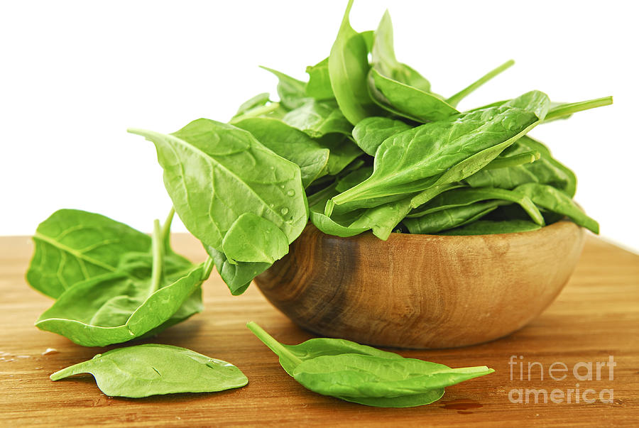 Spinach Photograph  - Spinach Fine Art Print