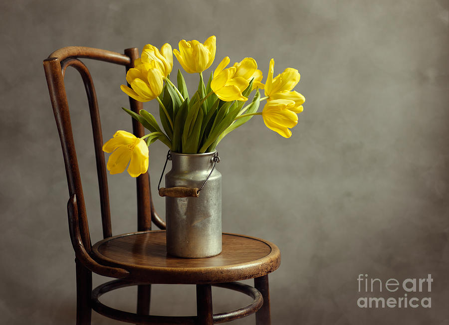 Still Life With Yellow Tulips Photograph  - Still Life With Yellow Tulips Fine Art Print