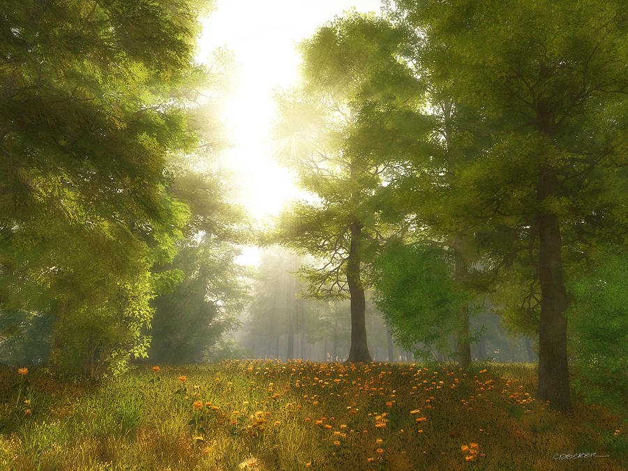 Sunlit Meadow Digital Art