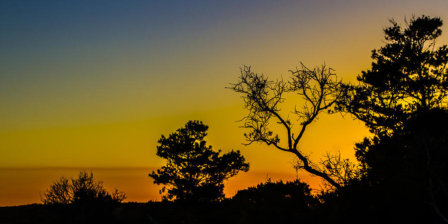 Sunset Silhouette Photograph  - Sunset Silhouette Fine Art Print