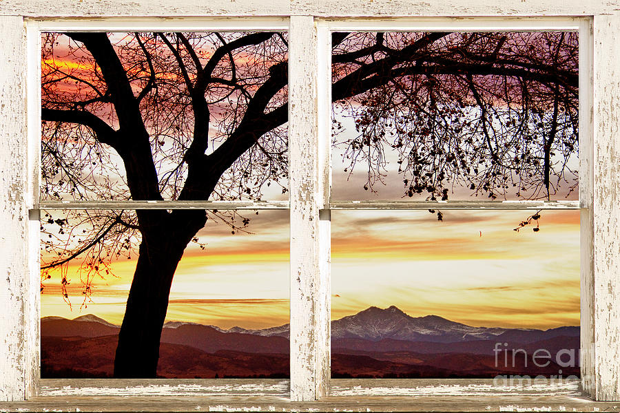 Sunset Tree Silhouette Abstract Picture Window View Photograph