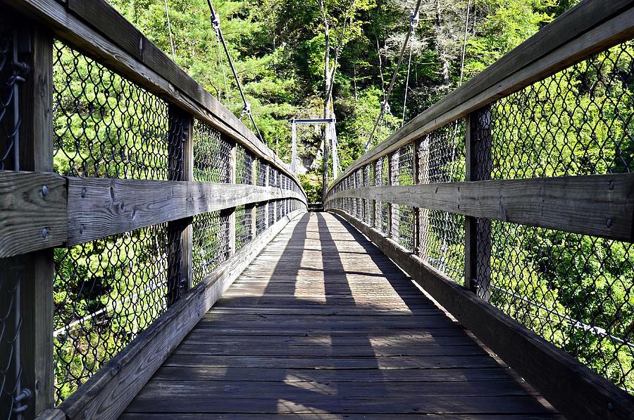 Suspension Bridge Photograph
