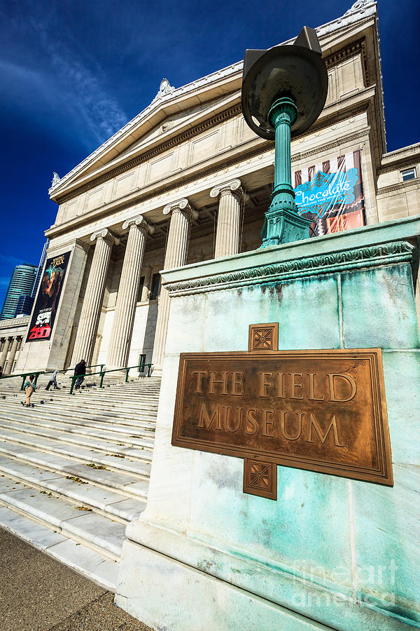 America Photograph - The Field Museum Sign In Chicago by Paul Velgos