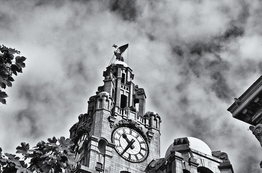 The Liver Building  Photograph  - The Liver Building  Fine Art Print