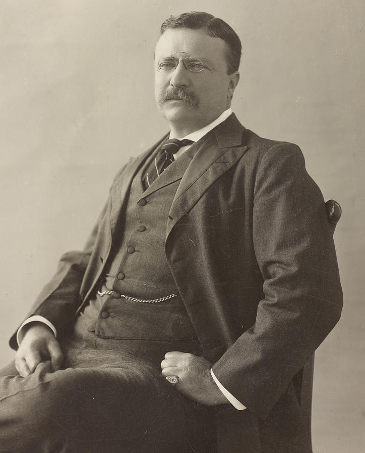 Theodore Roosevelt Painting