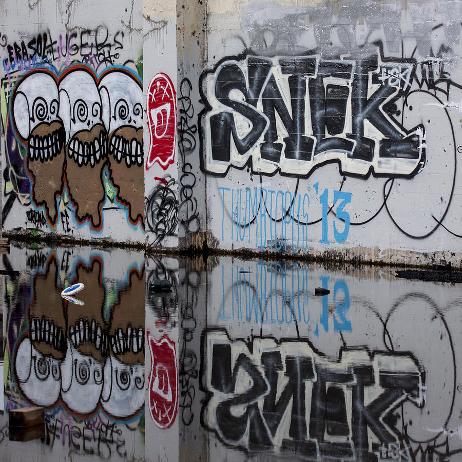 Graffiti Photograph - Three Skulls Graffiti by Carol Leigh
