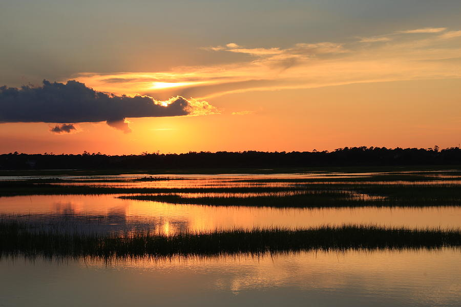 Tidal Marsh Wilmington Nc Photograph