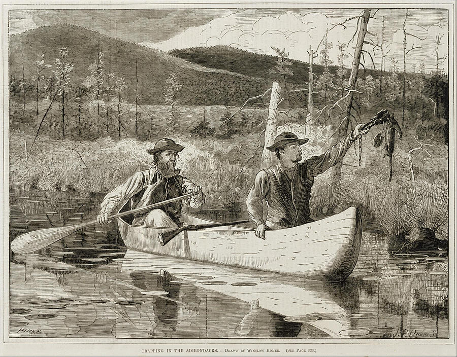 Trapping In The Adirondacks Painting