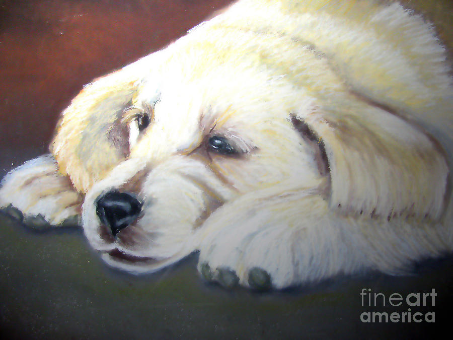 Dog Pastel - Tuckered Out by Amber Nissen