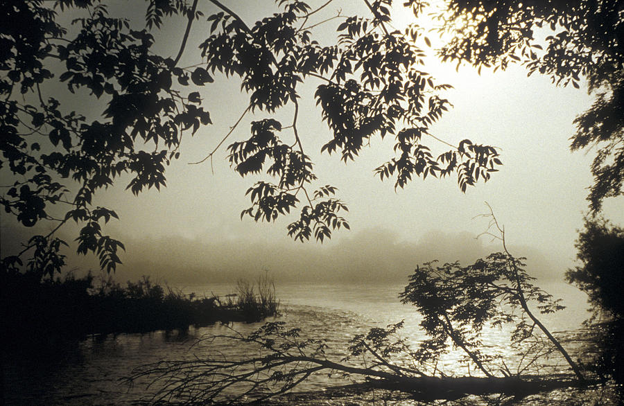 Ussuri Territory The Ussuri River Photograph