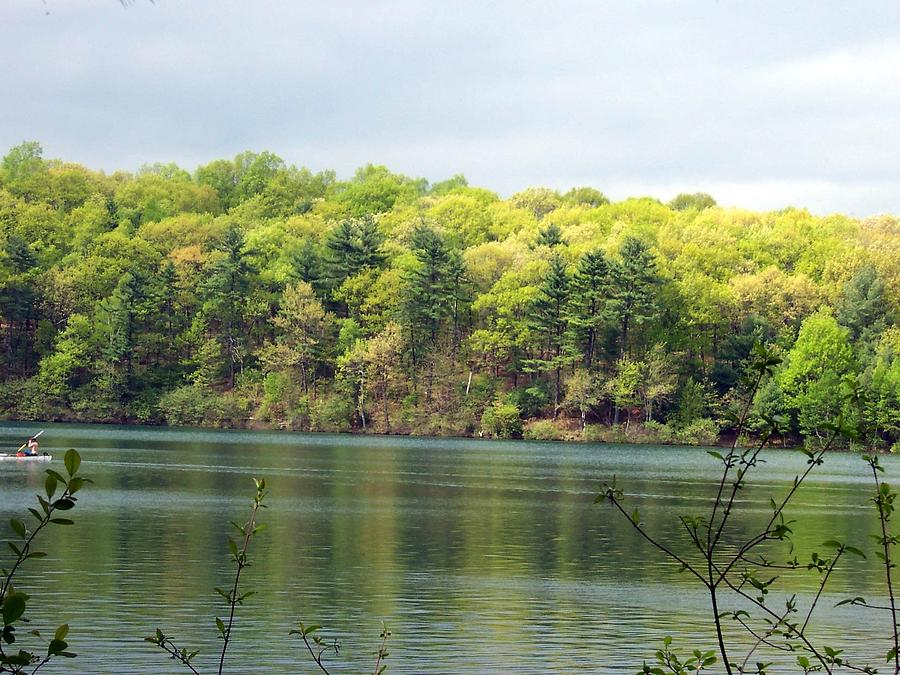 Walden Pond Photograph