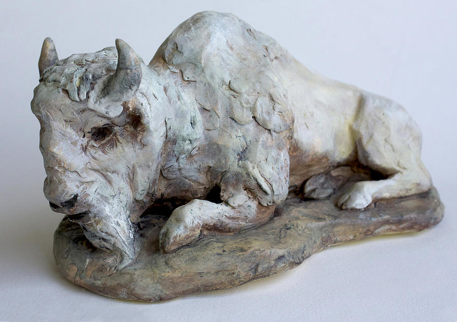 White Buffalo-sculpture Sculpture