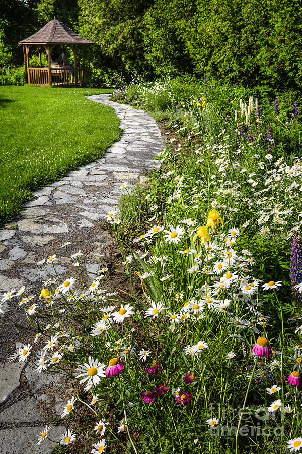 Wildflower Garden And Path To Gazebo Photograph