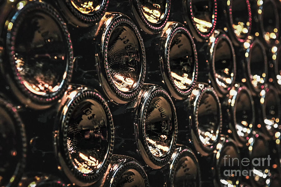 Bottle Photograph - Wine Bottles by Elena Elisseeva